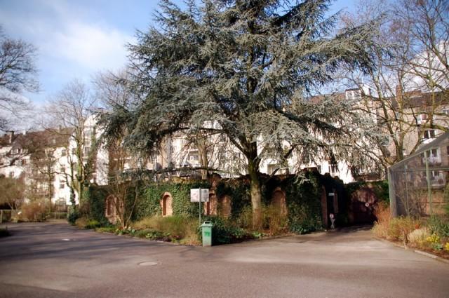 Eulenkloster